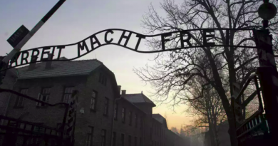 Israeli student admits stealing items from Auschwitz for art project