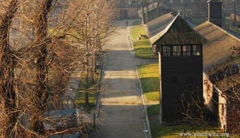 Auschwitz-Birkenau museum suffers wave of abuse following new law