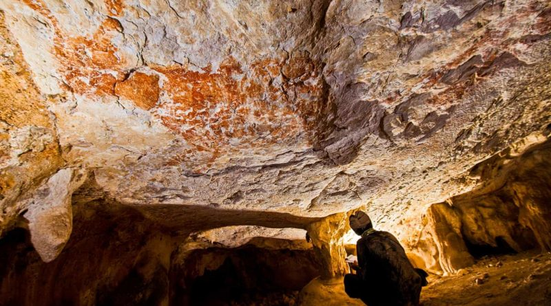 40,000-Year-Old Painting Of Animal, World's Oldest, Found In Borneo