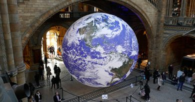 Natural History Museum declares climate emergency