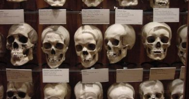 Education Vs. Shock Value: Displaying Human Remains